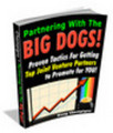Thumbnail Joint Ventures Tutorial - Partnering With The Big Dogs