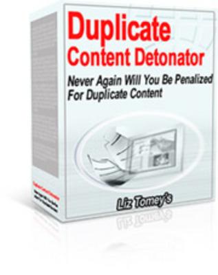Product picture Duplicate Content Detonator